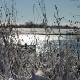 Vinterfiskeri i put & take fiskesø