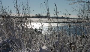 Vinterfiskeri