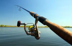 Fiskestang til put & take sø