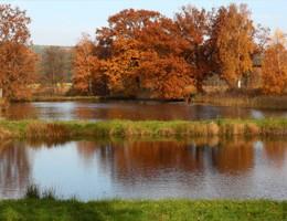 Efterårsferie – tag børnene med ud og fiske i ferien