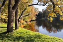 Årets gang ved fiskesøen: September
