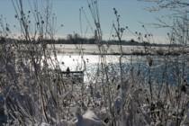 Årets gang ved fiskesøen: December