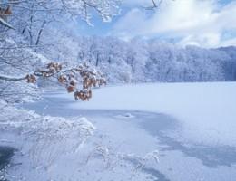 Årets gang ved fiskesøen: Februar