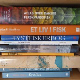 5 fiskebøger til din sommerferie